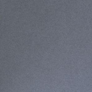 Platinum Grey Pearlescent Dinky Debut Cardstock